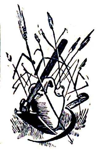 colectiv-campesinas