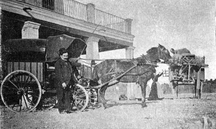 Feriante Elx 1900