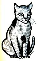 gato anarquista