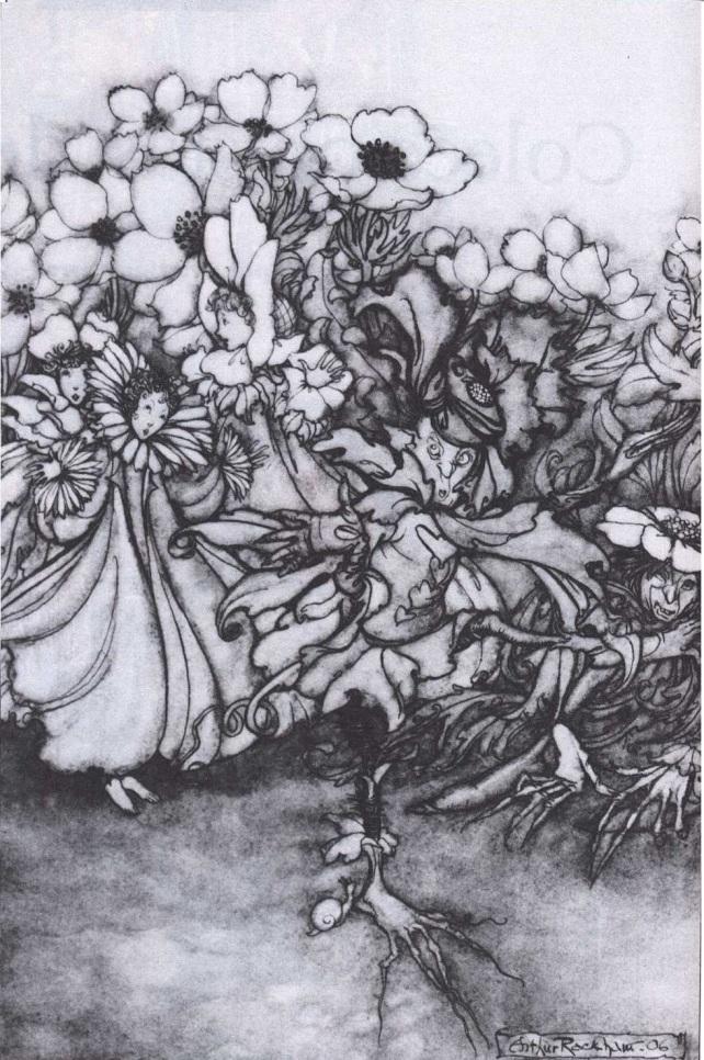 Ilustracion Hadas y flores_Arthur Rackham peter Pan y los jardines de Kensington1906