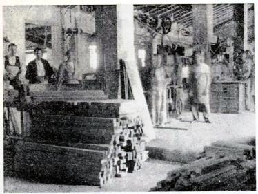 Industria Madera Socializada_CRES Villena_Tiempos Nuevos 1937