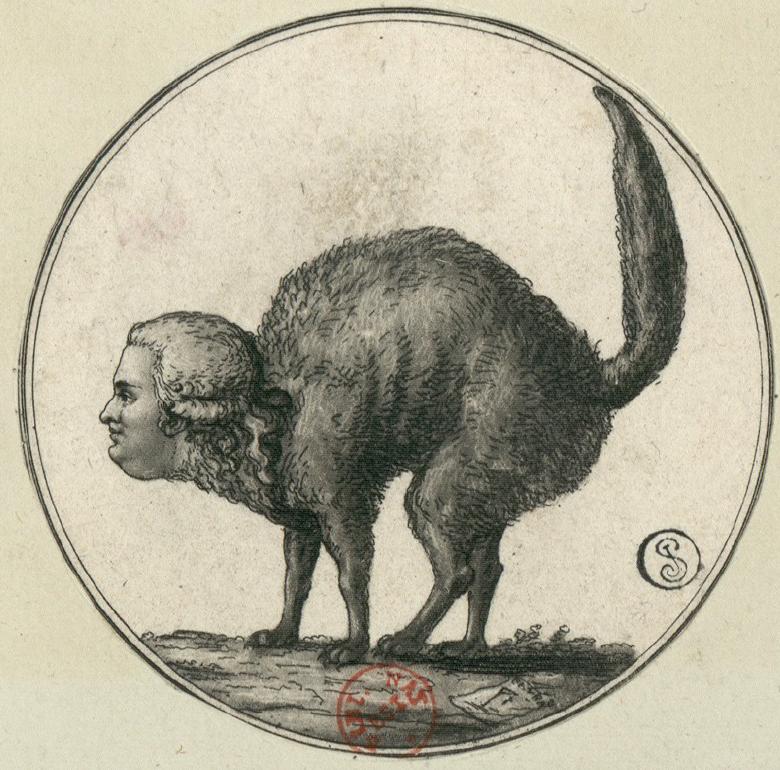 Monsieur ..Le Chat_1790
