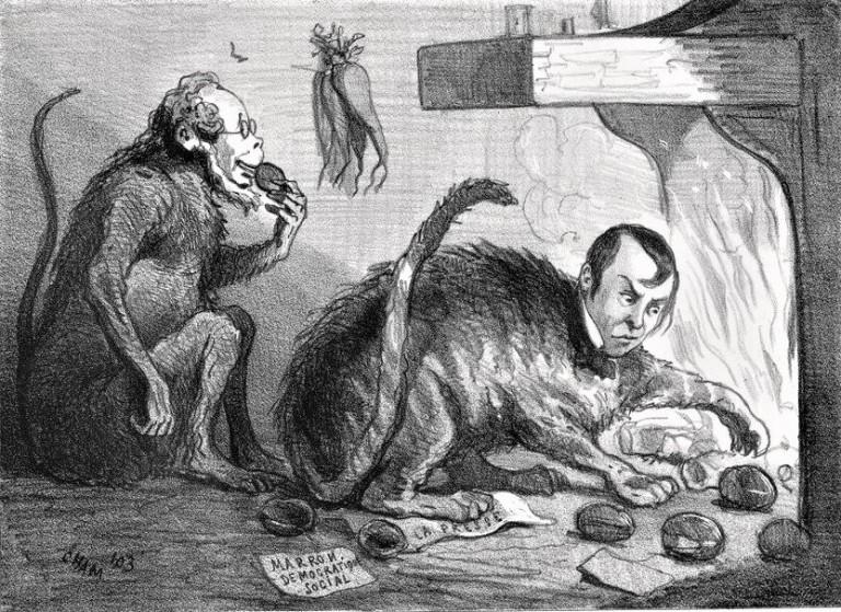 Renouvelé de La Fontaine ou le chat qui retire les marrons du feu_ham
