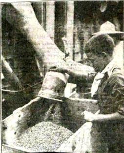 trabajo-infantil-colectividades