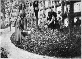 Tumbas Olvidadas_Alsina-Molas y Nogués_Cementerio Nuevo BCN_LRB 1932