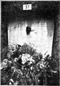 Tumbas Olvidadas_Manuel Archs y Paulino Pallás_Cementerio Nuevo BCN_LRB 1932