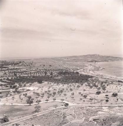 Vista de La Albufereta_Alicante 1941
