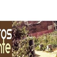 Xarxa d'Horts d'Alacant