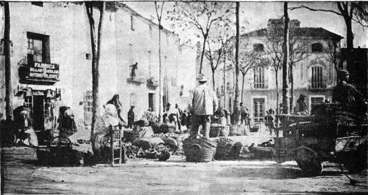 plaza malvas villena 1900